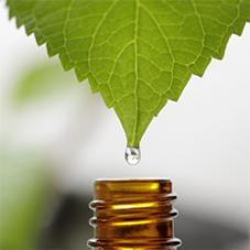 extraction huiles essentielles